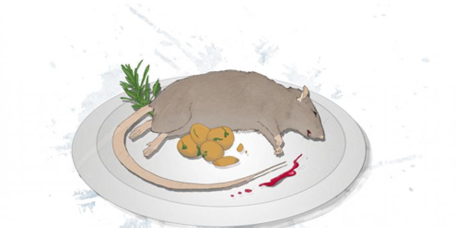 Graisse et délicieux rat