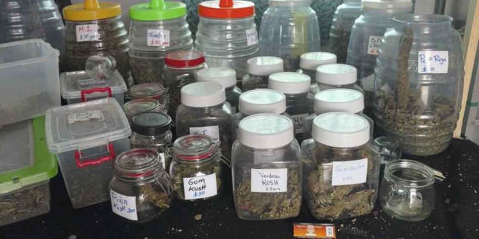 Confisca PGJ 300 kilos de mariguana en Tepito