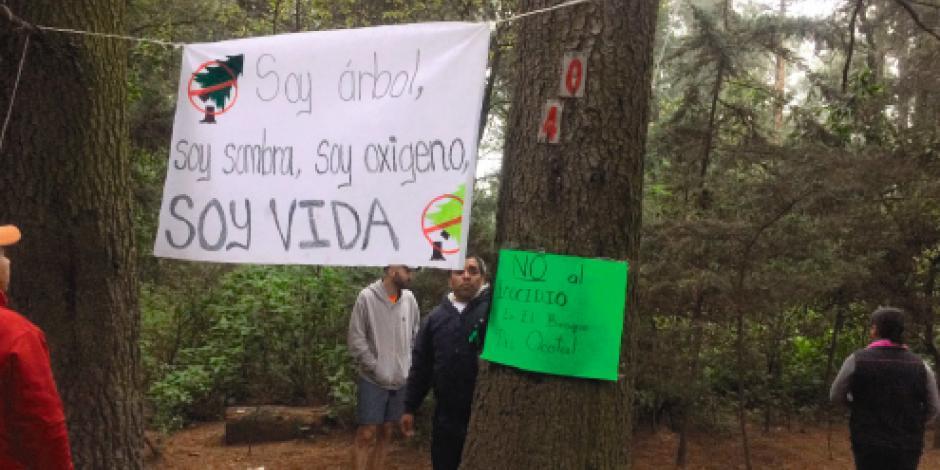 Vecinos de El Ocotal piden cesar tala por Interurbano