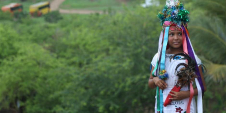Luchan por autonomía 30 comunidades indígenas de Michoacán