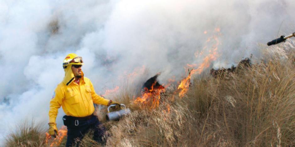 Incendios forestales arrasan  180 mil hectáreas en el país
