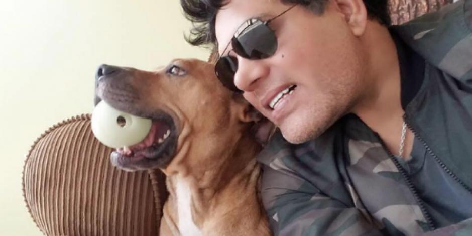Ofrece actor 300 mil pesos por asesinos de perros pitbull