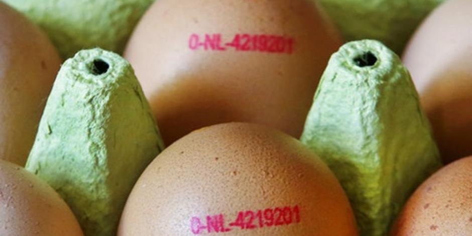 UE planea reunión extraordinaria por escándalo de huevos contaminados