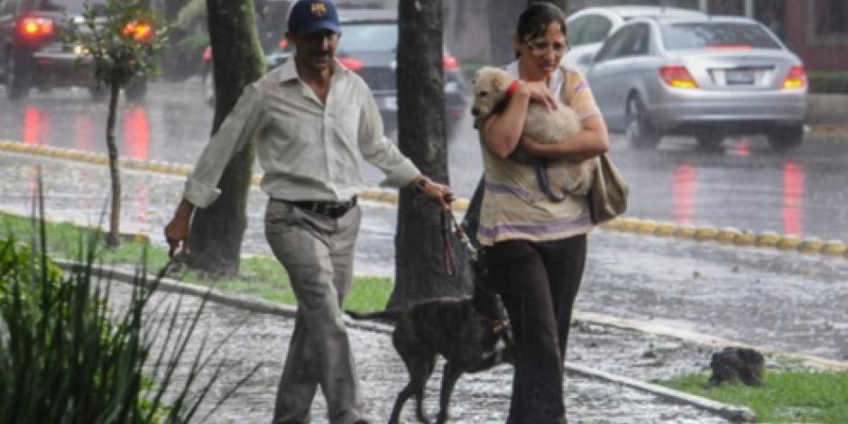 Amanecen 6 delegaciones de la CDMX con lluvia ligera