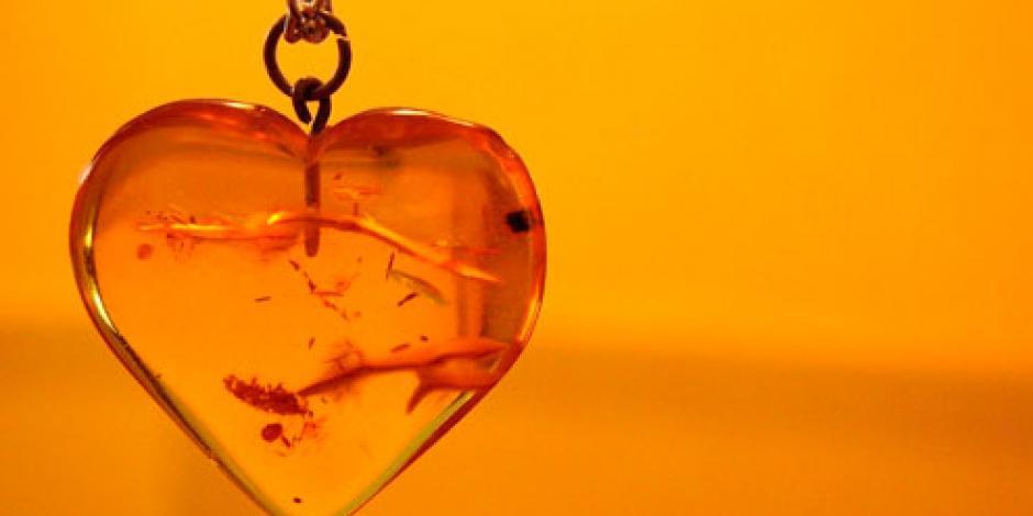 Pareja halla collar en forma de corazón que enterró hace 26 años