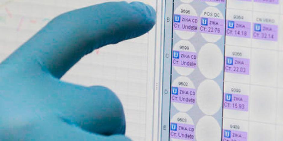 Investigadores crean prueba rápida y de bajo costo para el virus Zika