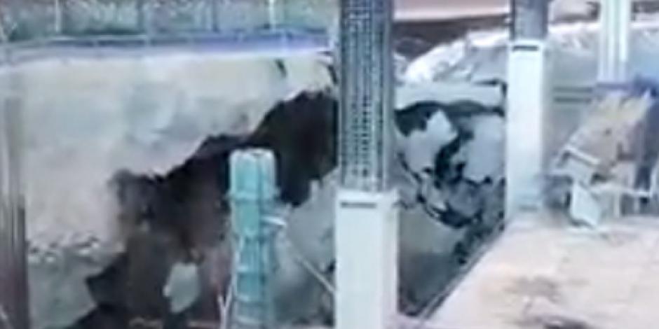 Difunden video de derrumbe en obra de Periférico Sur