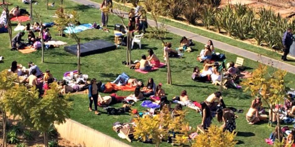 Realizan en Chile masivo picnic en topless