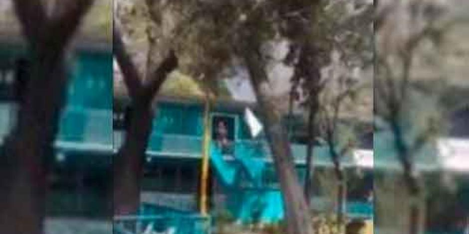 Cae árbol dentro de CCH Vallejo; no hay heridos