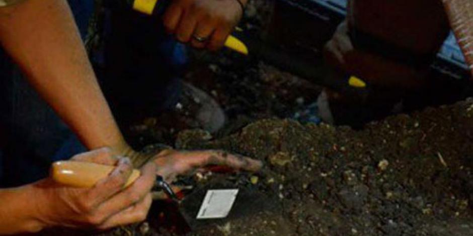 Investigan PGR y fiscalía hallazgo de restos óseos en Iguala