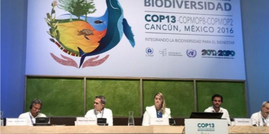 Pérdida de biodiversidad, asunto de seguridad nacional, afirma Mancera