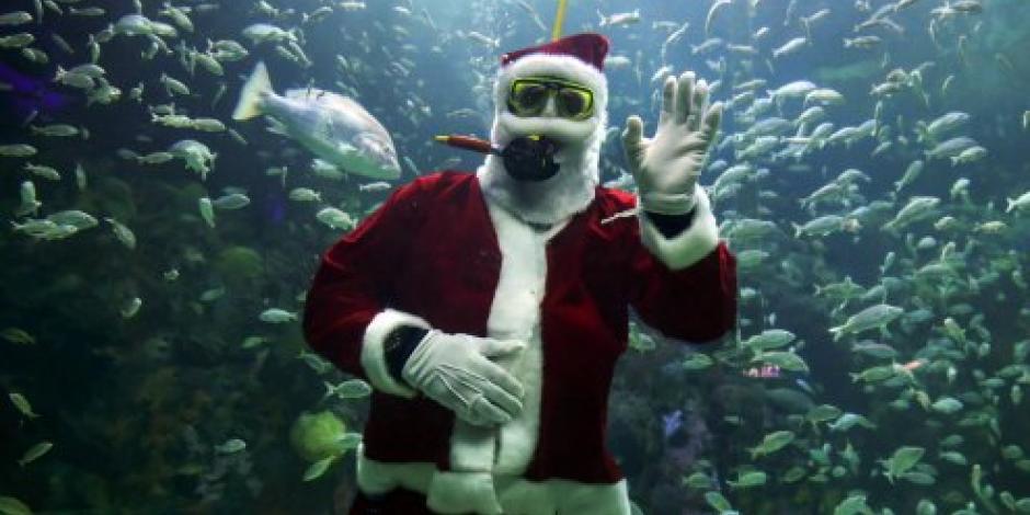 El Acuario de Veracruz recibe a Santa Claus en pecera arrecifal