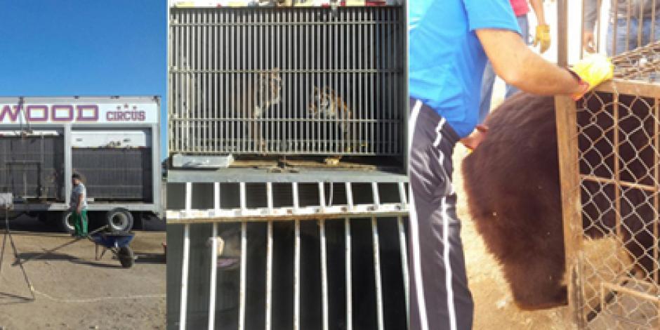 Llama Conagua a frenar uso de canales como tiraderos