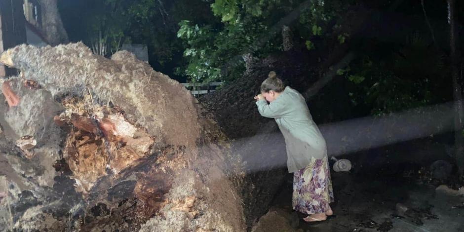 Mujer llora por caída de nogal