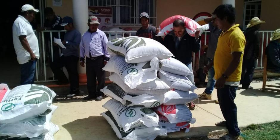 Guerrero fertilizante