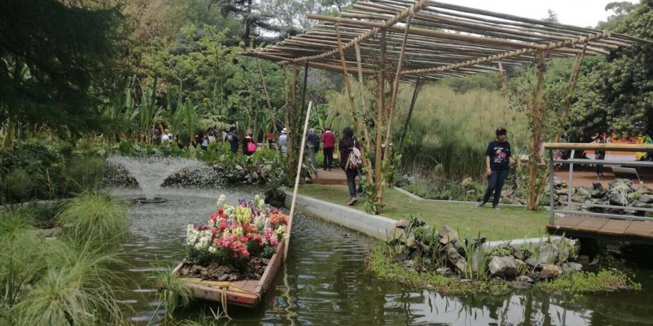 jardin-botanico-1