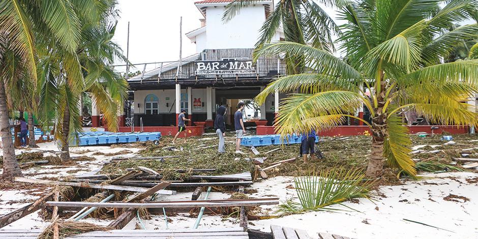 Palmeras e infraestructura urbana caída, tras el paso de Delta, en Cancún, el 7 de octubre.