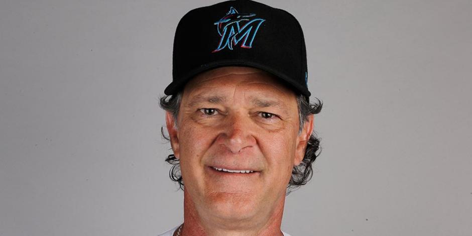 Don-Mattingly-MLB
