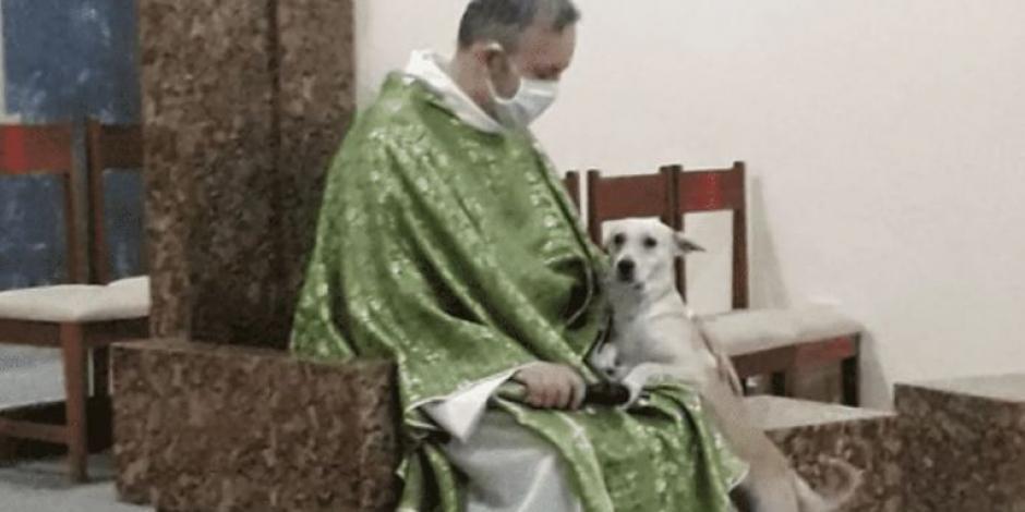 sacerdote perritos