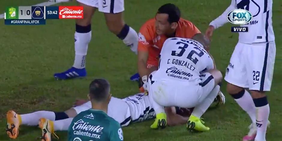 Leon-Pumas-Johan-Vasquez