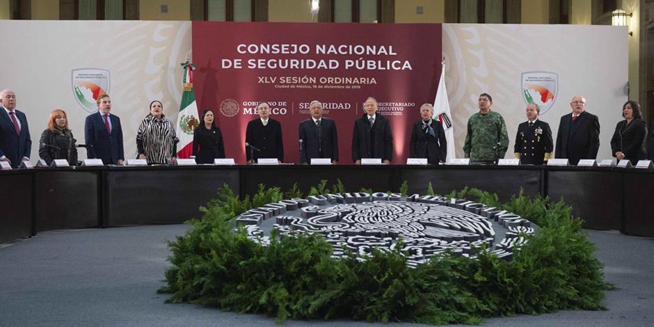 consejo nacional de seguridad publica