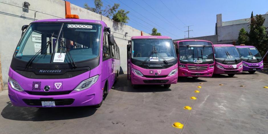 micros_autobuses