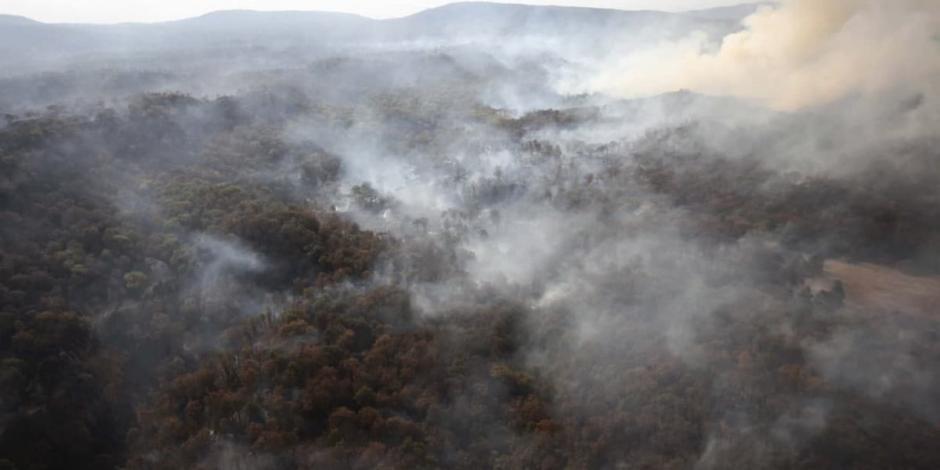 incendio Jalisco-la primavera-bosque-la canoa