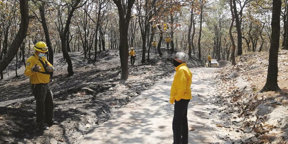 La Conafor reportó ayer que la conflagración en el Bosque de la Primavera se encontraba controlada, pero continuarían trabajando hasta liquidar por completo las llamas.