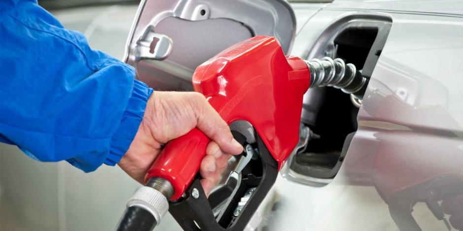 Gasolina premium
