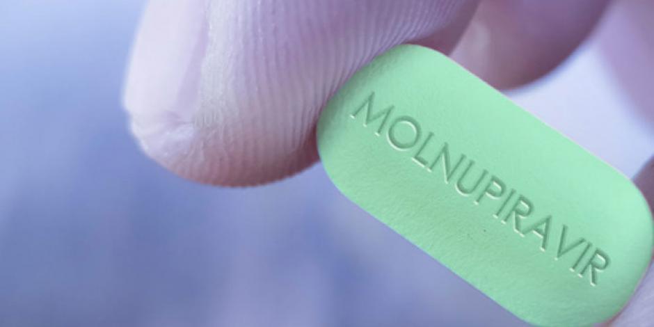 molnu-web-696x378