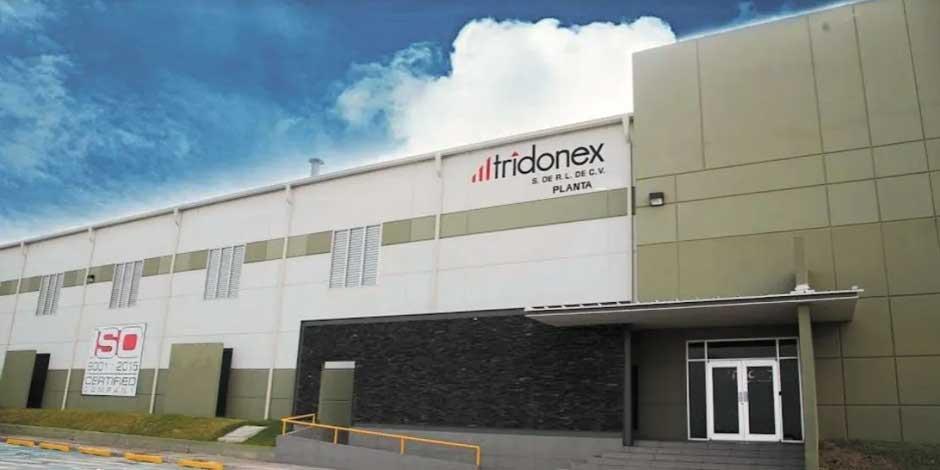 Tridonex