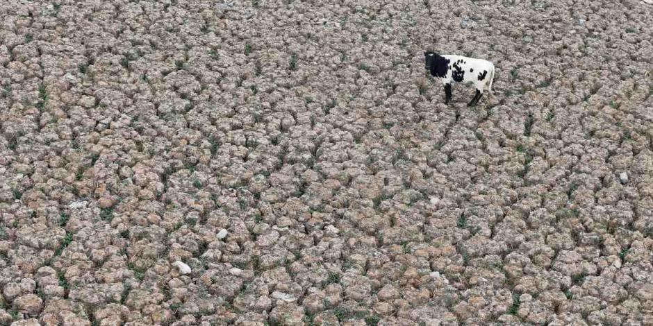 sequía-Chile-cambio climático