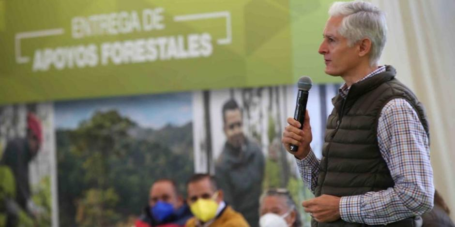 Alfredo del Mazo-bosques-