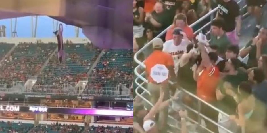 VIDEO_ Gatito cae del techo de estadio de la NFL y aficionados lo salvan