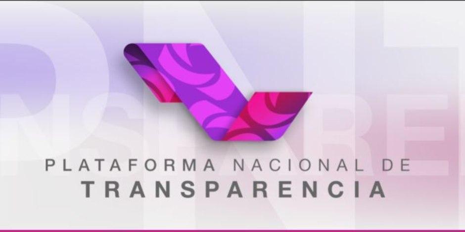 plataforma transparencia-hackeo